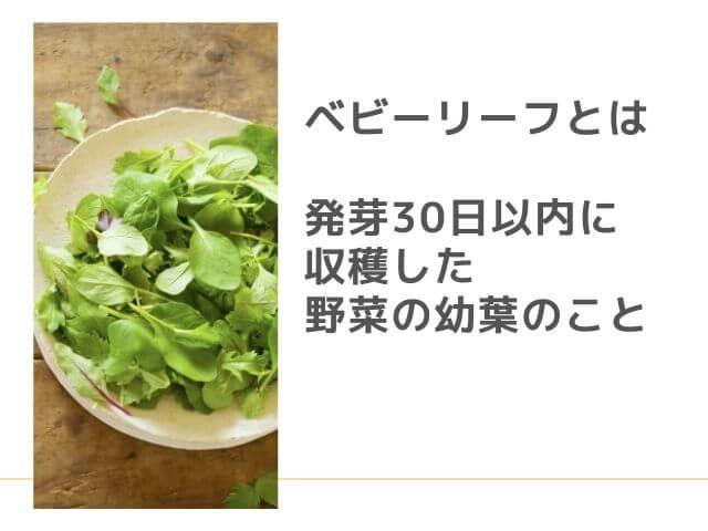 ベビーリーフの写真 ベビーリーフとは 発芽30日以内に収穫した野菜の幼葉のこと